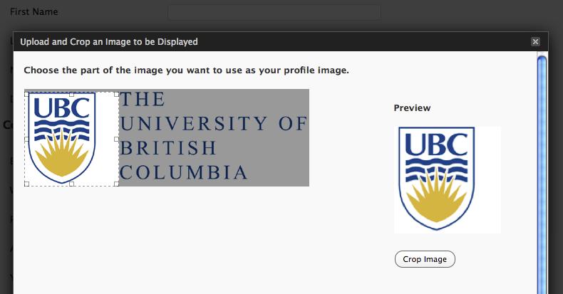 user-avatar screenshot 3