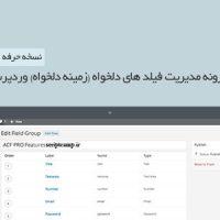 افزونه فارسی مدیریت زمینه دلخواه وردپرس نسخه حرفه ای 5.5.9