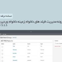 دانلود  افزونه فارسی مدیریت زمینه دلخواه وردپرس نسخه حرفه ای ۵.۱.۵
