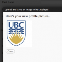 دانلود افزونه  User Avatar ایجاد آواتار در وردپرس